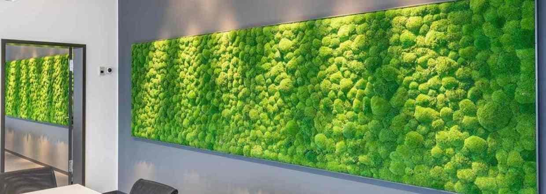 <strong><em>En grøn væg uden vedligeholdelse</em></strong>