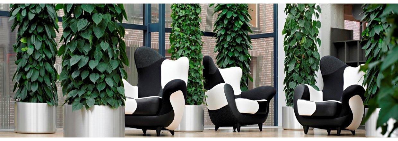 <em><strong>FloraDin - Specialister i kontorbeplantning og planteservice<br>til erhverv og institutioner</strong></em>